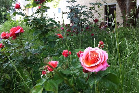 Romantische Remise - Stahnsdorf - Huis