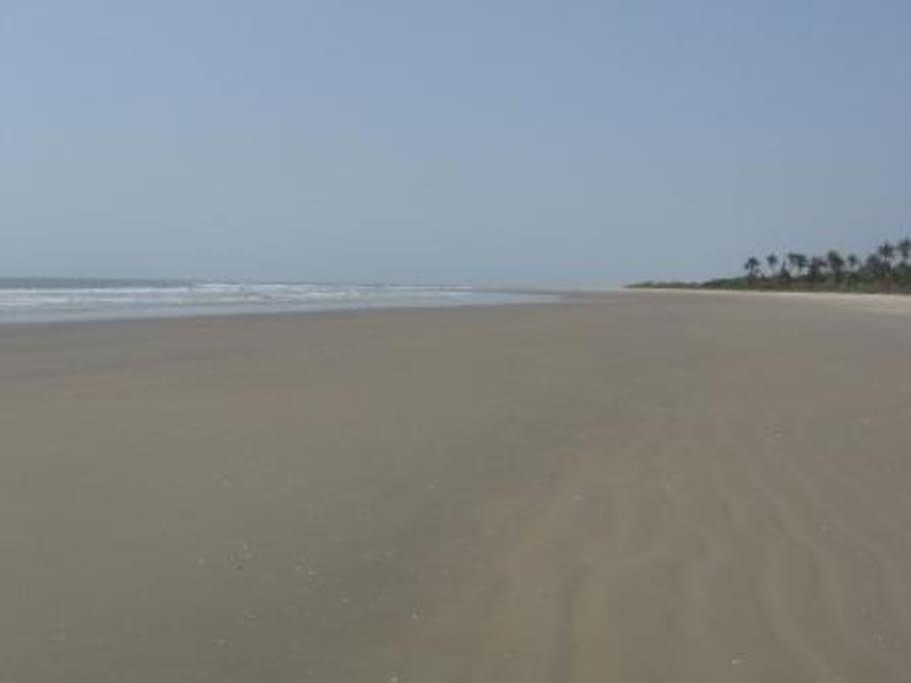 La plage du domaine