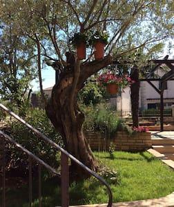 Juli's place - superior apartment - Rovinjsko Selo