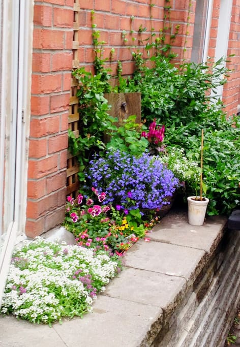 Freshness of the greens and the aroma of the purples transform this patio into a perfumed rainbow when a breezes passes by...