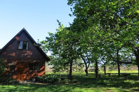 Windermere Orchard Cottage - Le Cap - Cabane