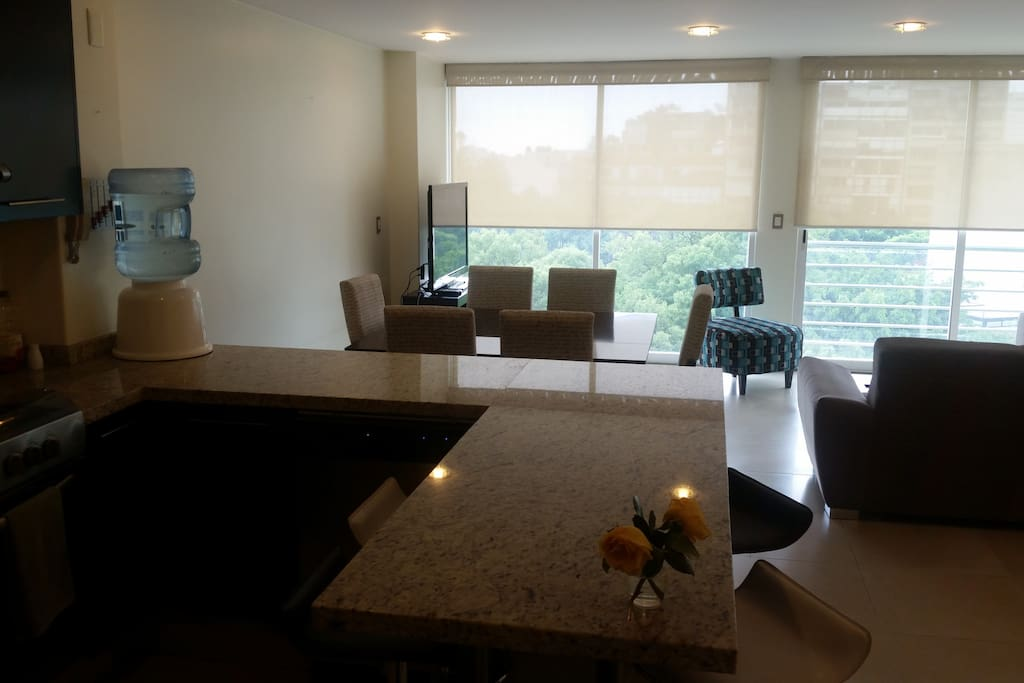 All open living and dining spaces