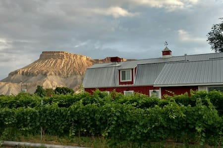 Beautiful Vineyard Barn House - Palisade - 一軒家