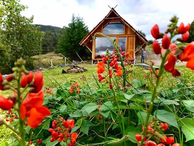 Ilaló Lodge