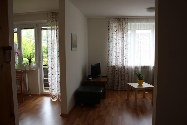 Helle, freundliche Wohnung 2-3 Pers - Bad Schallerbach - Lägenhet