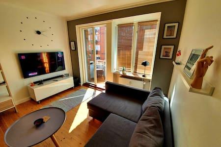 Very nice  apartment in Copenhagen