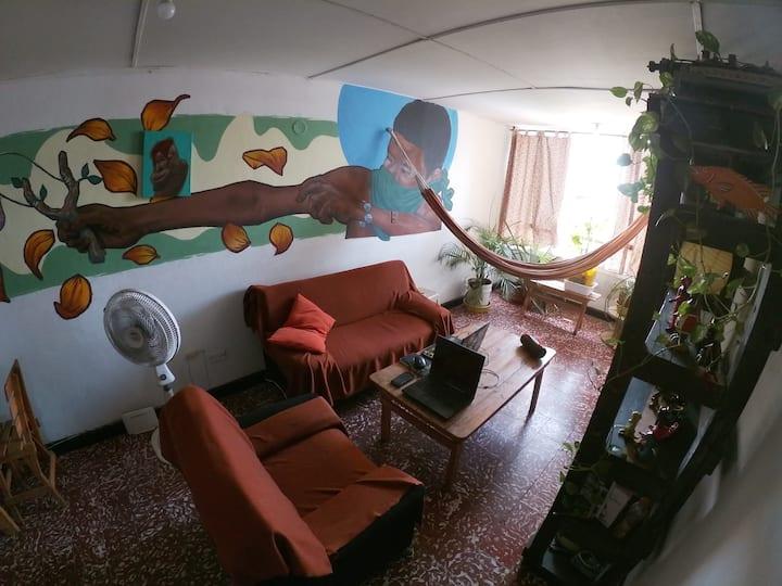 Arte Urbano, Plantas y Tranquilidad