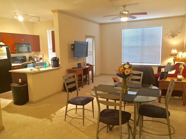 Brand New Apt for Singles & Couples - Jacksonville - Apartamento