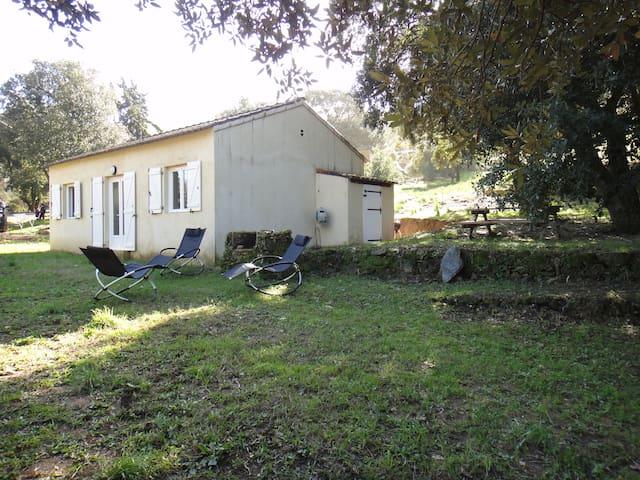 Une maison en pleine nature, calme et harmonieuse - Appietto - Ev