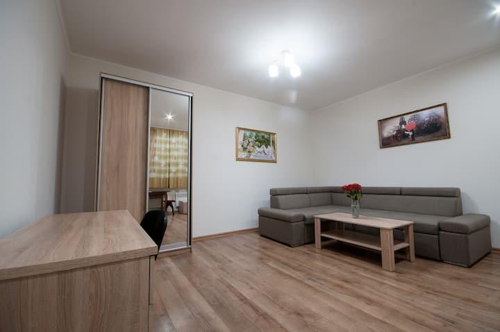 Уютная квартира в центре города (Мукачевская 4,19)