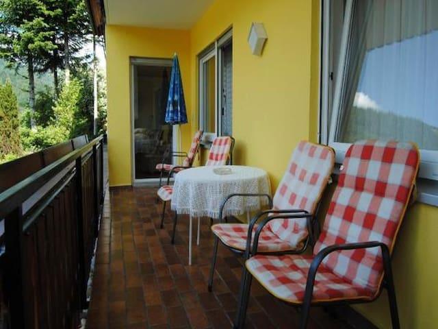 Ferienwohnung Treyer, (Oppenau-Löcherberg), Ferienwohnung 105qm, 3 Schlafzimmer, max. 6 Personen