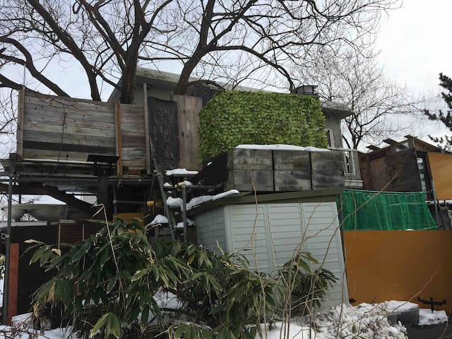 The tree house and the adult hideout family room