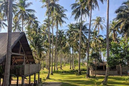Beachfront, Off grid, Tropical Paradise