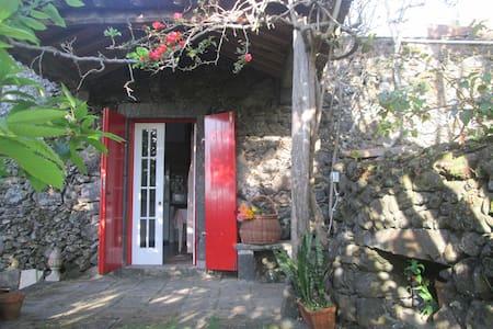Quinta dos Carvalhos — Casa Rosa - Fenais da Luz - บ้าน