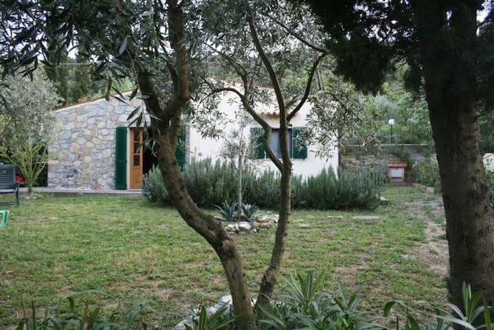 La Casetta nel verde vicino al mare - Marina di Campo - Hus