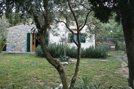 La Casetta nel verde vicino al mare - Marina di Campo