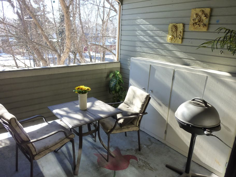 Lovely Open Patio with Furniture and BBQ! (Winter View)