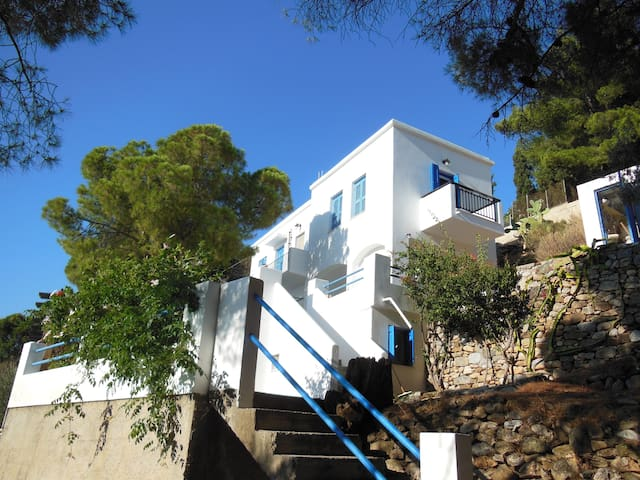 Vlasis house - Kalymnos - House