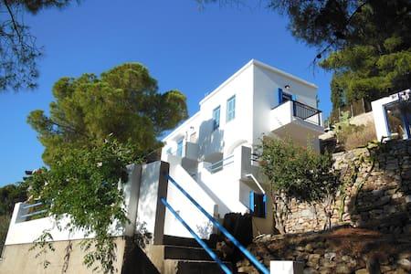 Vlasis house - Huis