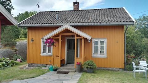 Summer and winter dreamhouse