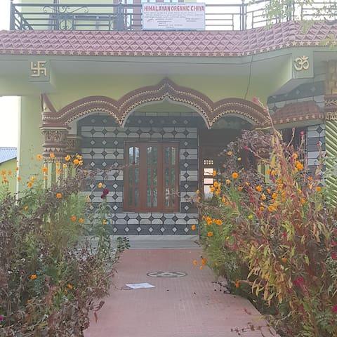 Badahara , Rapti Municipality -8 , Chitwan.