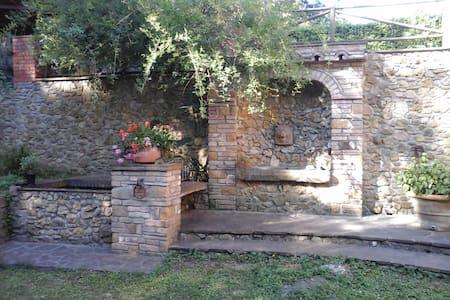 Nella terra degli Etruschi 2 - Ponteginori