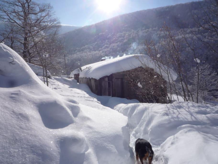 Aqui estamos en invierno... un poco de nieve es imprescindible un par de meses minimo por estas tierras. Estamos altos en montaña: es normal