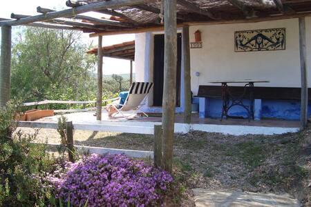 Cottage with Bravura dam vue - Corsino - Villa