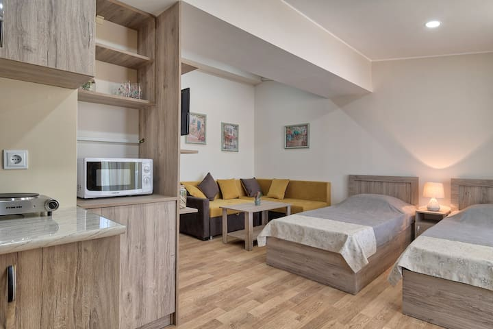 501 New Tiflis Apartment in the Center of the City