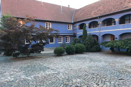 Dans corps de ferme spacieux duplex cosy de 125m2 - Mittelschaeffolsheim - Appartamento