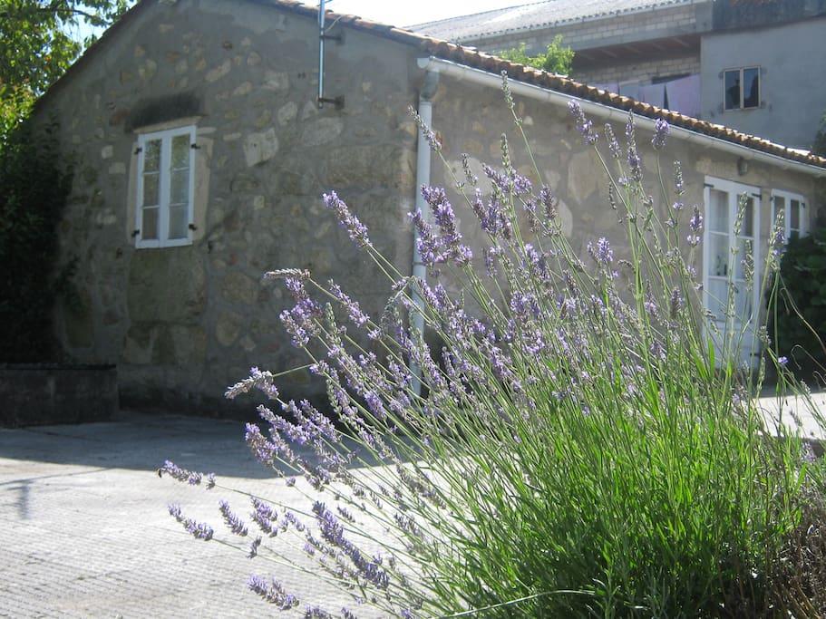 Vista Exterior Casa