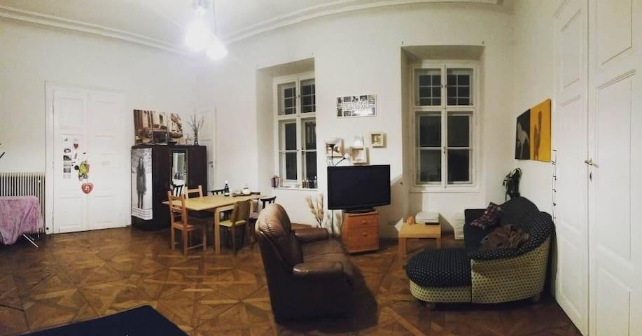 wunderschöner Altbau im Herzen von Graz - Graz - Apartment