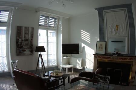 Vienne, centre historique, appartement de standing - Vienne - Lejlighed