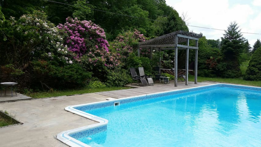 Catskills Modern Cabin Private Pool - Swan Lake - Hus