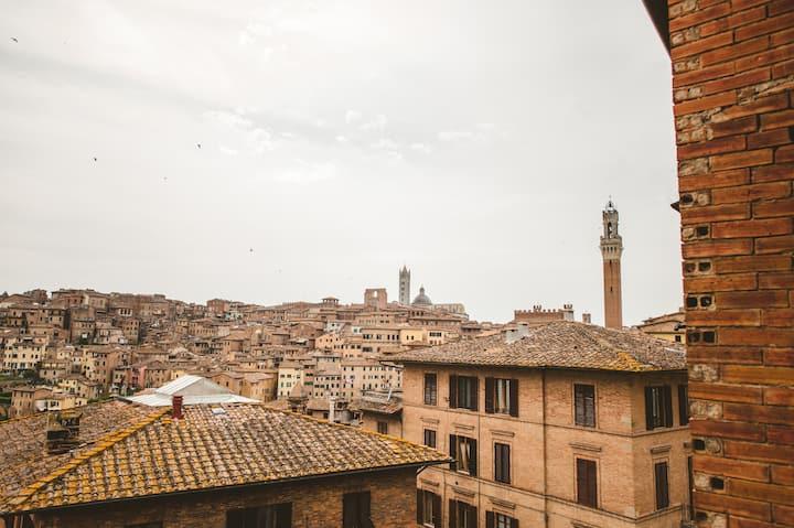 Panoramic central studio flat San Martino 12