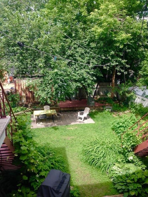 The private backyard