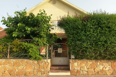 Tsippi's House