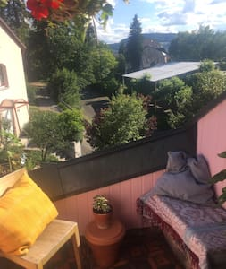 Cosy roof appartment near to Basel & Goetheanum