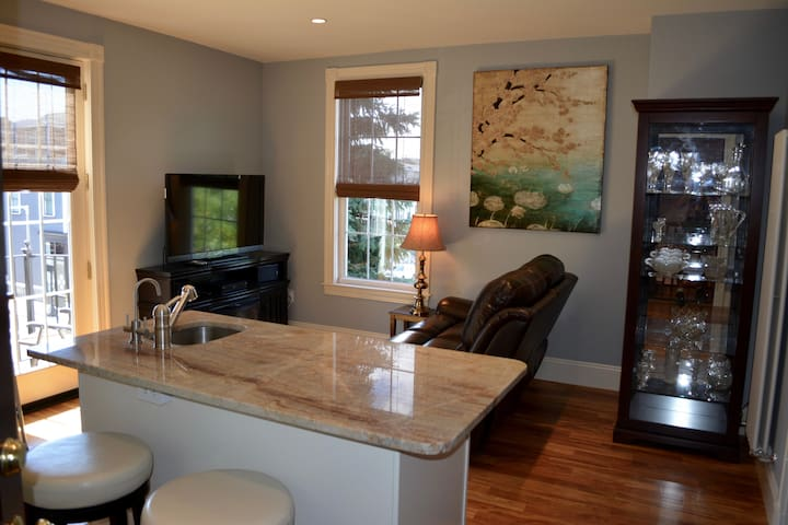 Living-Dining Room Combination