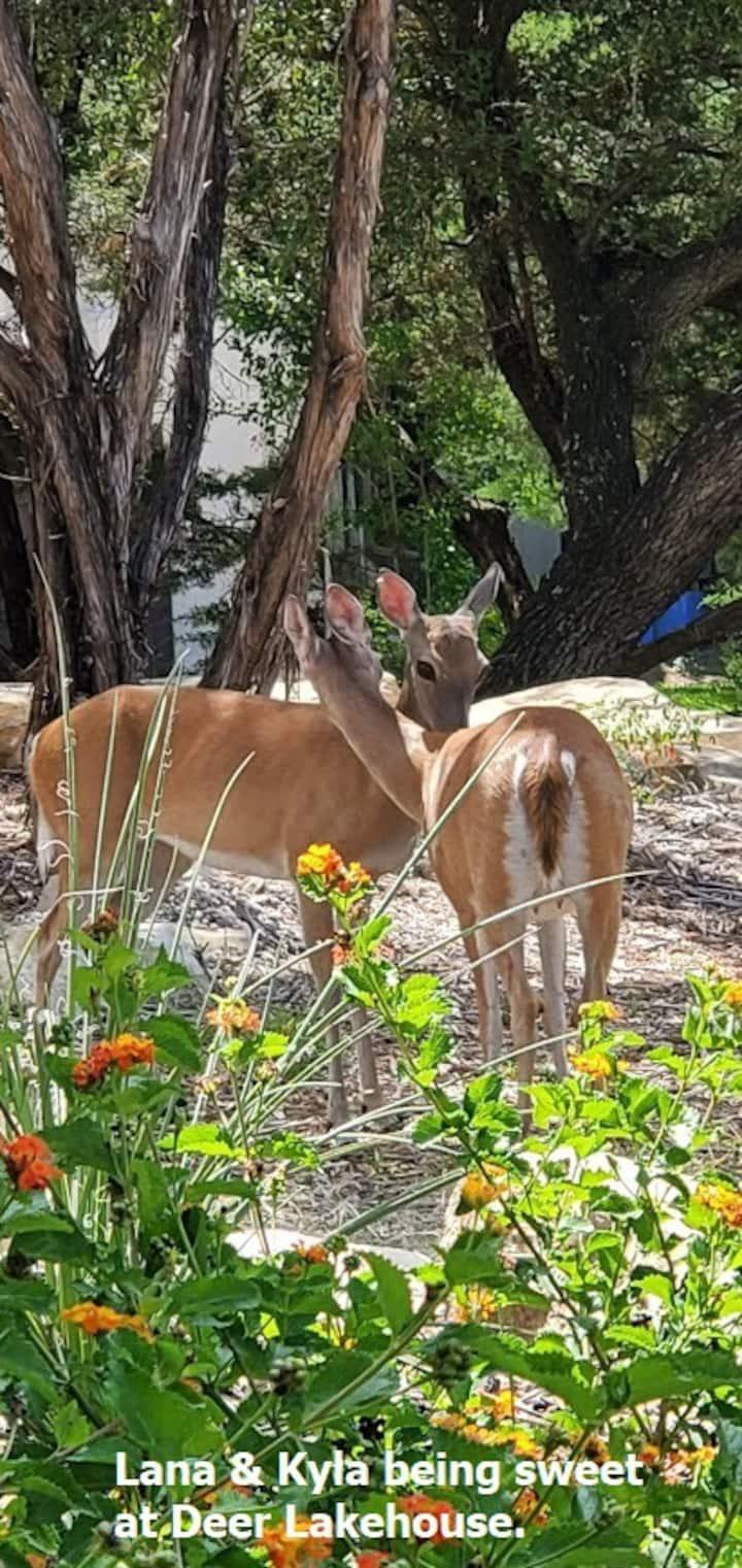Deer Lakehouse's Garden Room for Rent
