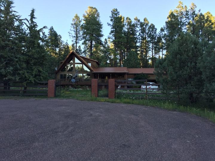 Tonto Village Cabin.  Near PAYSON, Arizona. USA.