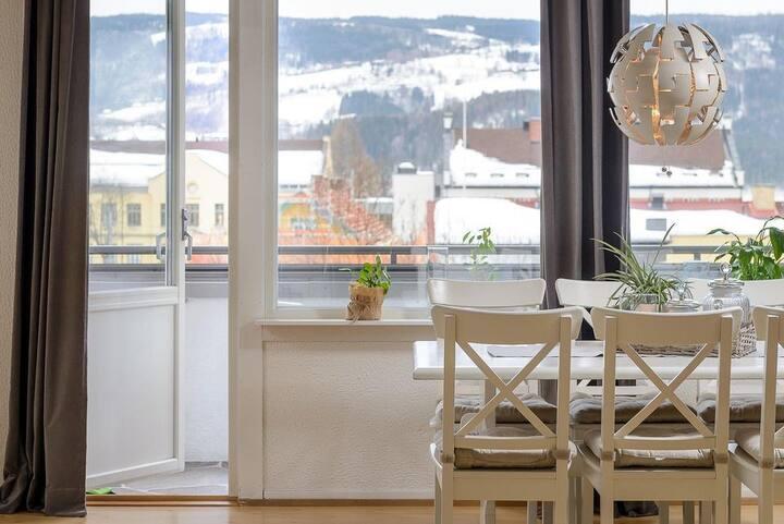 Trivelig og sentral toppleilighet i Lillehammer