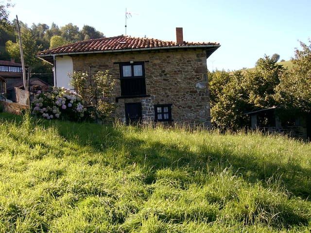 Típica casona asturiana - Ligüeria - Casa de férias