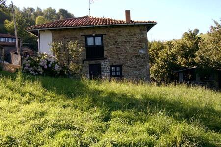 Típica casona asturiana - Ligüeria - Loma-asunto