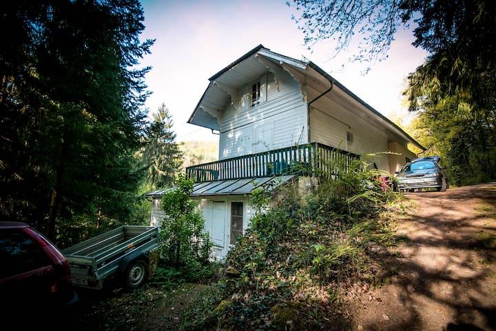 Les Coxinelles - Barr - House