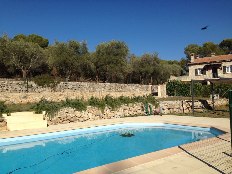 Relax at Villa Les Oliviers