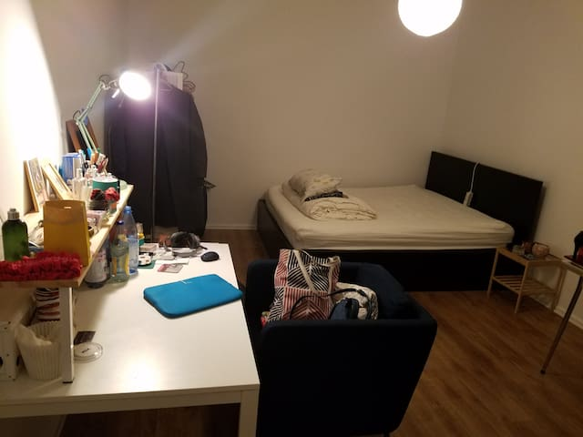 Spacious bedroom close to Mitte and Ringbahn