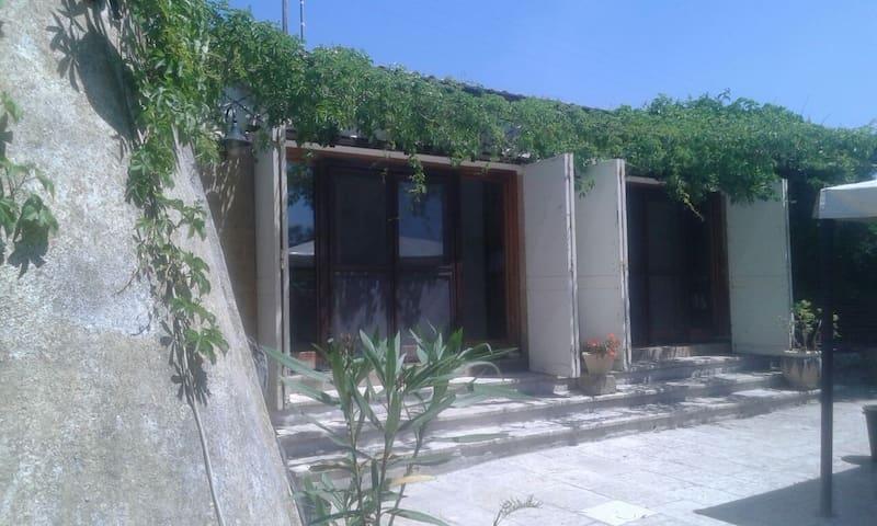 bellissima villa in pineta - Salve - House