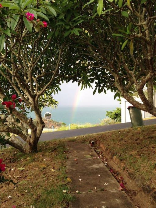 Frangipani's in flower and a rainbow