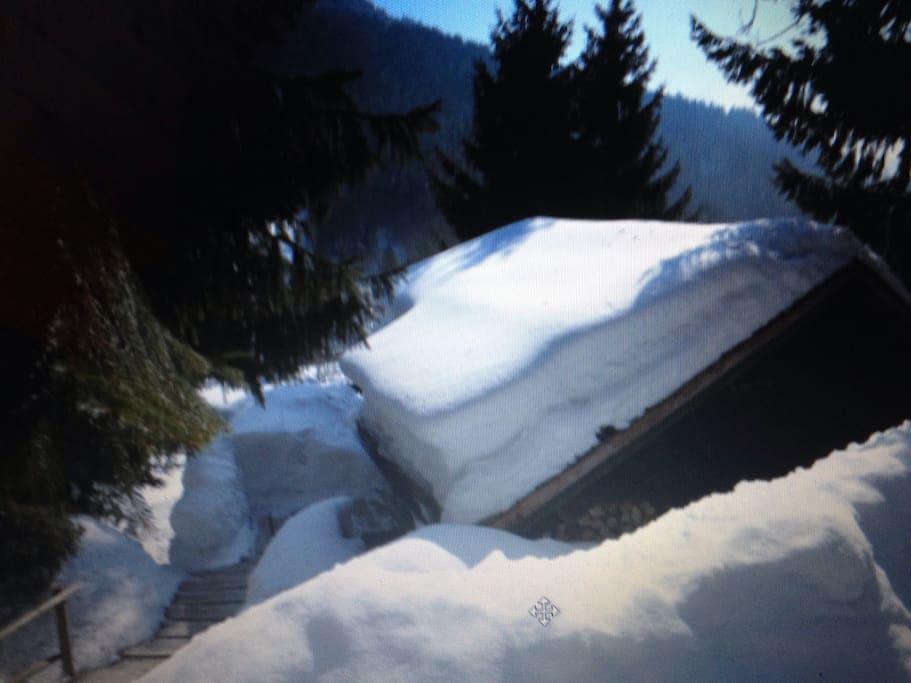 Loads of snow!